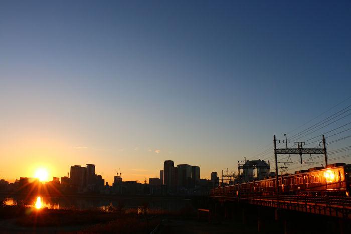 大阪・淀川区・淀川河川公園十三野草地区20160116-14