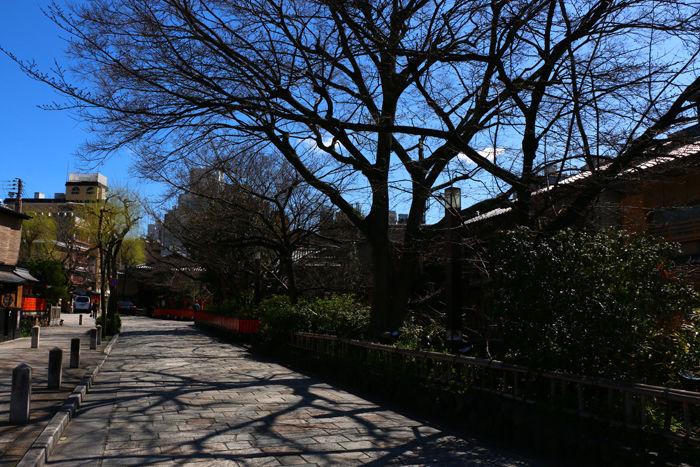 京都・東山区・祇園白川20160321-1