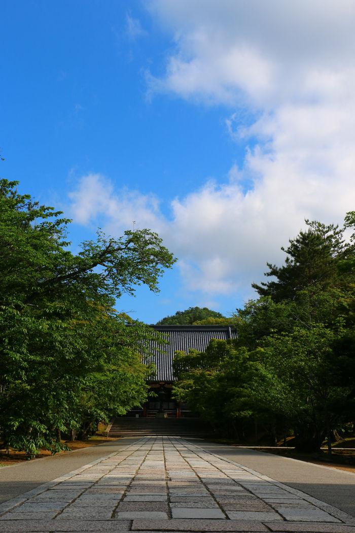 京都・右京区・仁和寺20160512-4