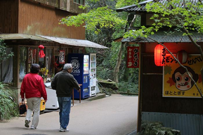 大阪・箕面市・箕面の滝20131120-2-6