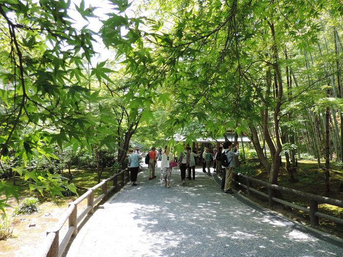 京都世界遺産天龍寺17