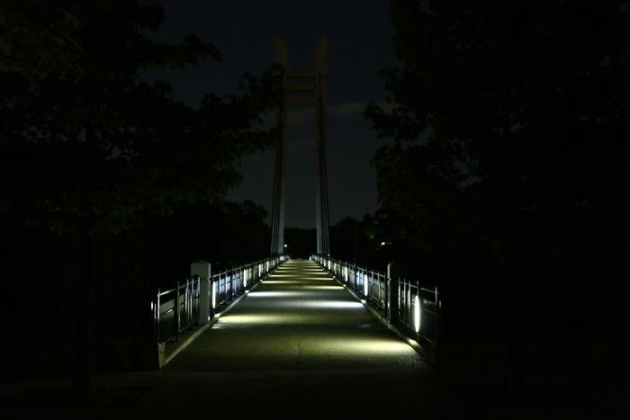 大阪・枚方市・山田池公園20141008-5