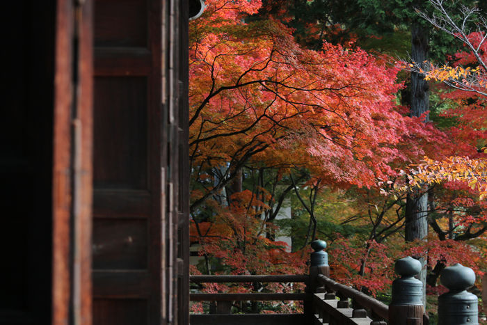 京都・左京区・真正極楽寺【真如堂】20131121-1-5