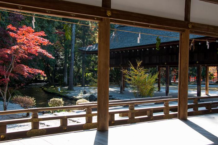 京都・北区・賀茂別雷神社(上賀茂神社)20161113-7