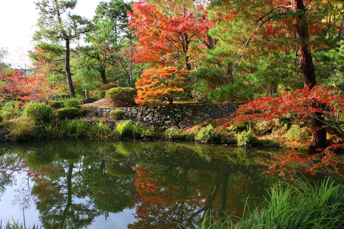 京都・北区・等持院20151121-12