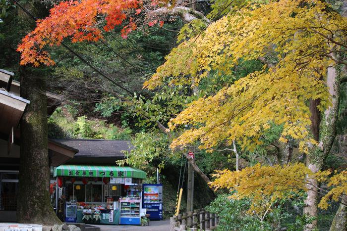 大阪・箕面市・箕面の滝20131120-2-8