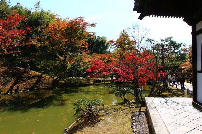 京都・東山区・高台寺20151116-5