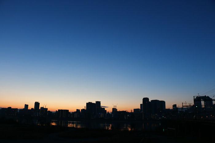 大阪・淀川区・淀川河川公園十三野草地区20160116-5