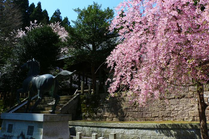 滋賀・長浜市・矢合神社20160412-6