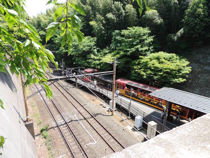 京都嵐山竹林の道10