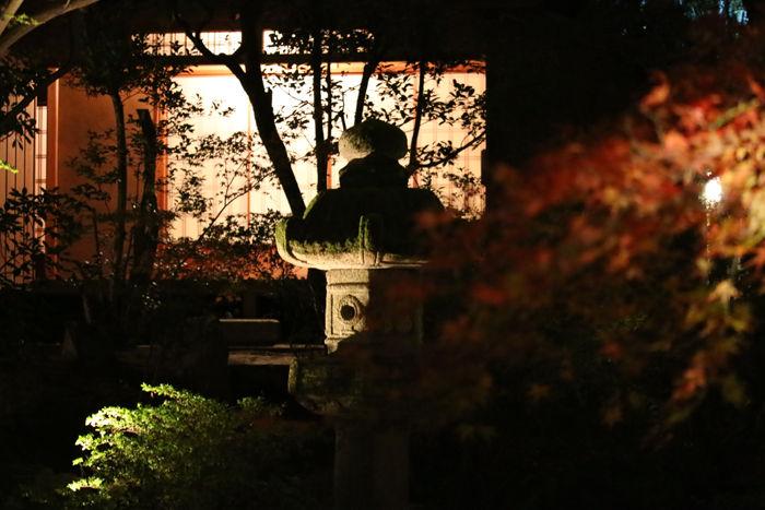 京都・東山区・天台宗青蓮院門跡20131123-2