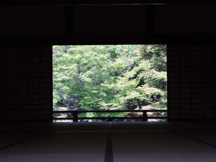 京都世界遺産天龍寺6