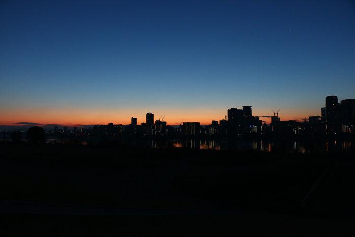 大阪・淀川区・淀川河川公園十三野草地区20160116-3
