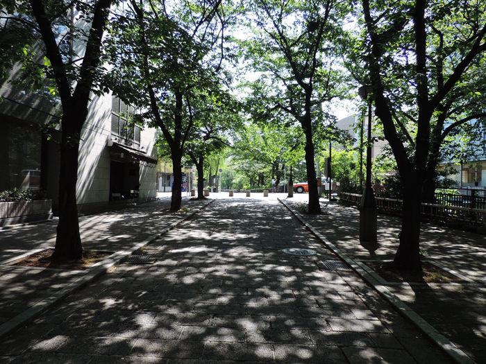 京都祇園界隈1-1