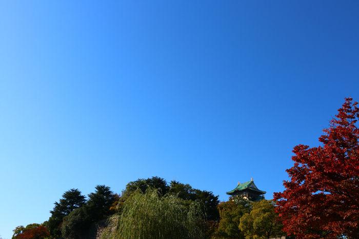 大阪・中央区・大阪城界隈20151104-3