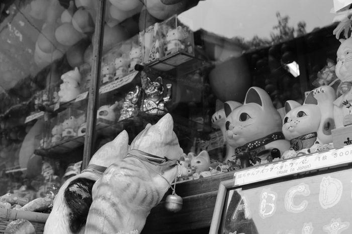 京都・東山区・【モノクロさんぽ】八坂神社~産寧坂界隈20150624-3