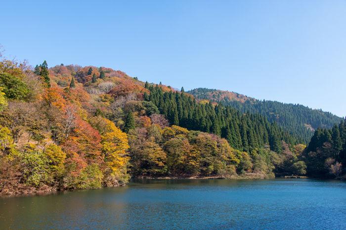 鳥取・八頭郡智頭町・芦津渓谷【三滝ダム】20161105-3