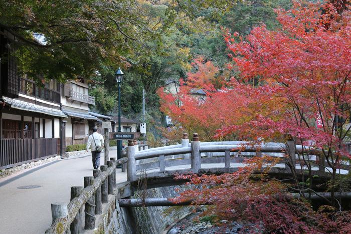 大阪・箕面市・箕面の滝20131120-1-5