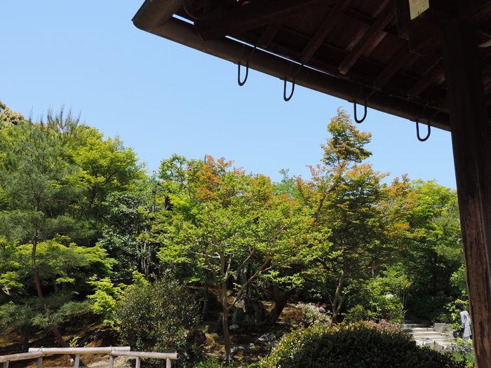 京都世界遺産天龍寺12