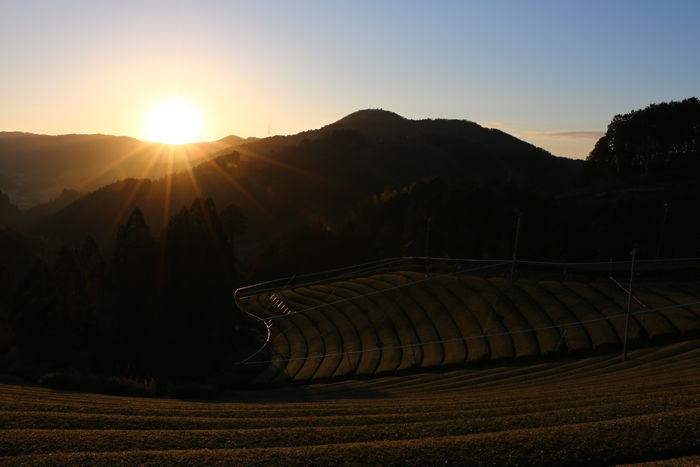 京都・相楽郡和束町・大字白栖地区20160225-13