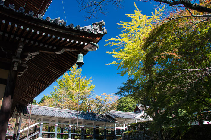 京都・左京区・南禅寺20161102-5