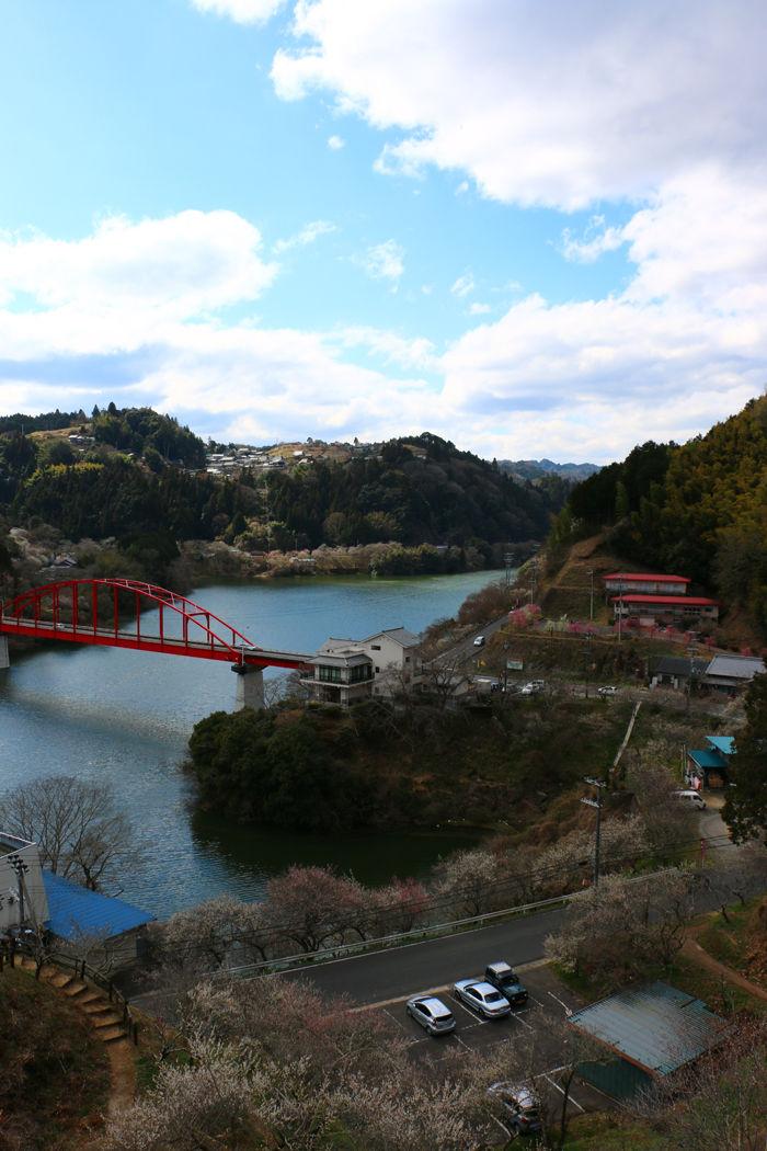 奈良・奈良市・月ケ瀬梅渓20160311-3