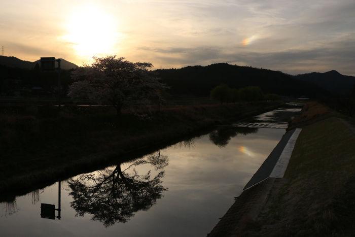 京都・南丹市・若森橋20160406-5