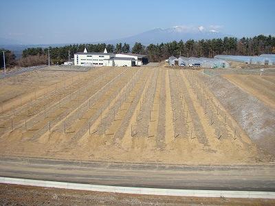 2009 冬 050
