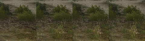 細かい草の表示量比較1