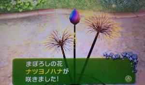 2014-09-05-03-52-53