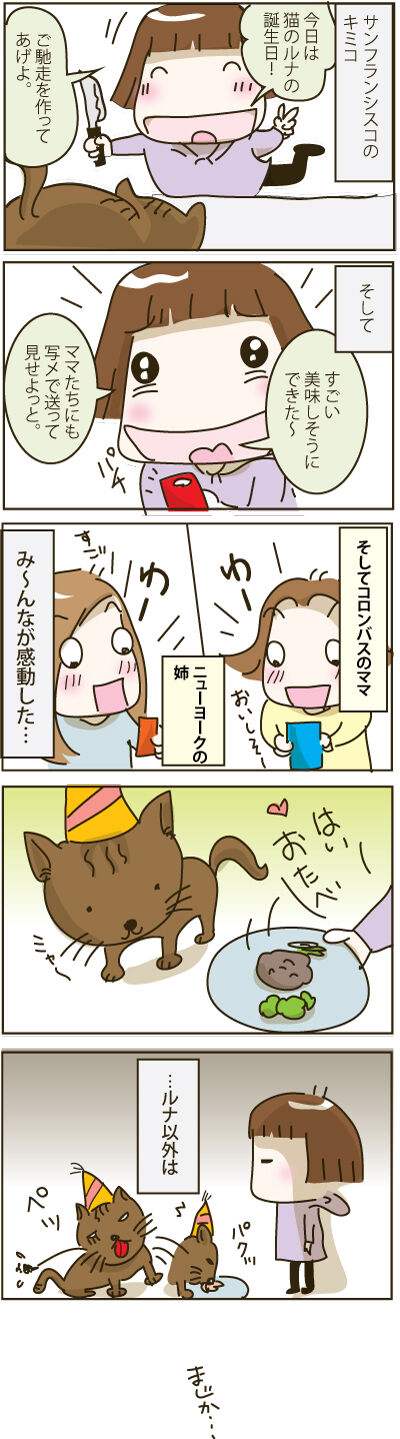 Kimiko-Luna,cat