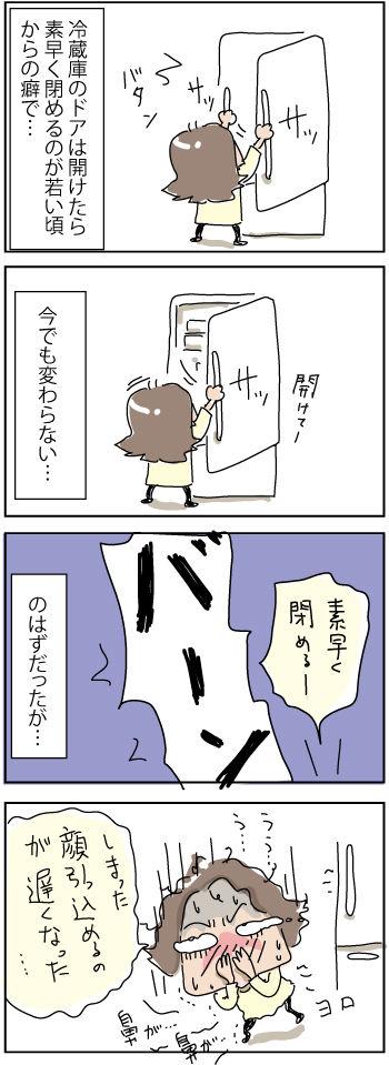 refrigerator-door