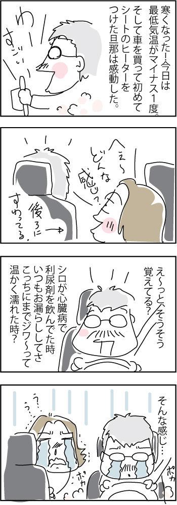 seat-heater