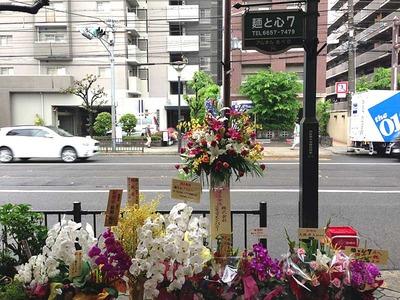 Osaka-Se13flower