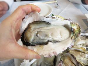9岩牡蠣@オイスタールーム