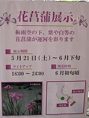 外観:花菖蒲展示@らーめん二男坊・キャナルシティ博多