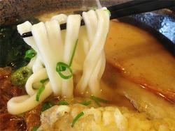 8よくばりうどん麺@かつみ屋