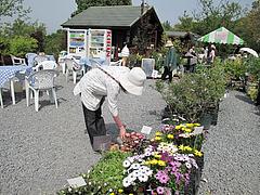 店@内山緑地・ガーデンショップさんぽ道・福岡