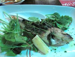 15鮮魚のオーブン焼き(アラカブ)@コムーネ