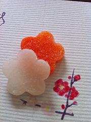 4蜜菓子・此の花@奈加川・石川・金沢