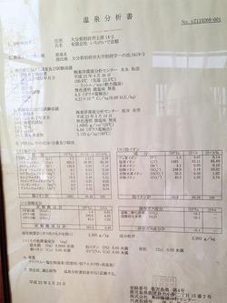 19温泉分析書@いちのいで会館・観海寺温泉