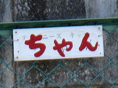 外観:駐車場1@ちゃん(CHANG)・中華・野間