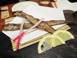 14幻魚(げんげ)@海の路