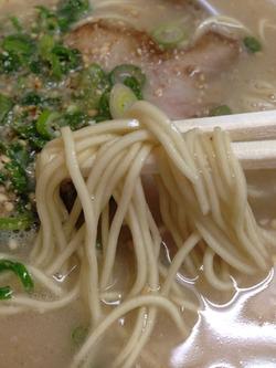 7細麺@一楽ラーメン