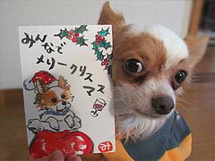 1アンディとクリスマス絵手紙