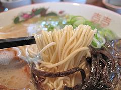 9ランチ:ラーメン麺@ラーメン幸心堂・大野城市