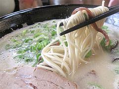 料理:白らーめん麺@博多新地らーめん