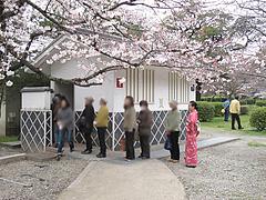 トイレの行列@福岡城址(舞鶴公園)・花見