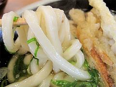 料理:ごぼう天うどんの麺@長住うどん・福岡市南区