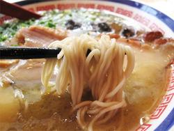 10博多鶏麺しょうゆ味麺@博多鶏麺